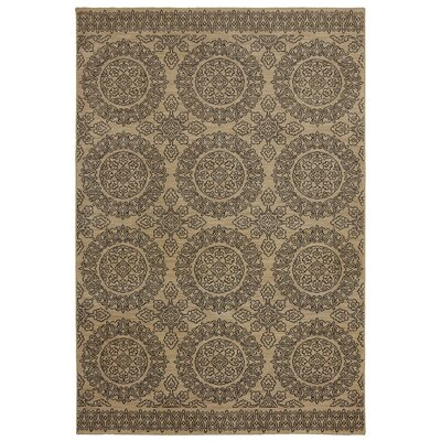 Pacifica Leawood Tan Area Rug Rug Size: 34 x 55