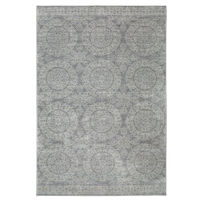 Pacifica Leawood Grey Area Rug Rug Size: 35 x 55