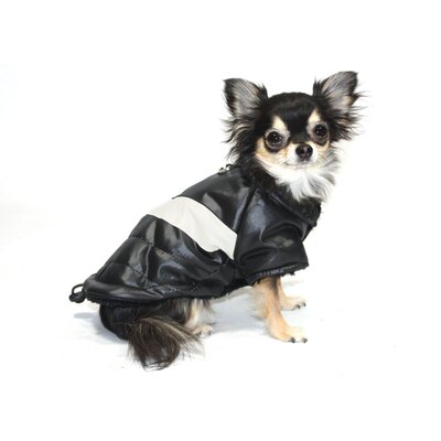 Classic V Dog Coat in Black