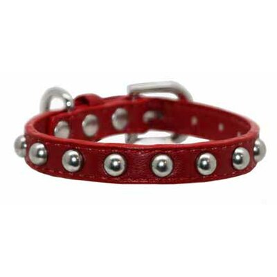 Silver Stud Dog Collar in Red