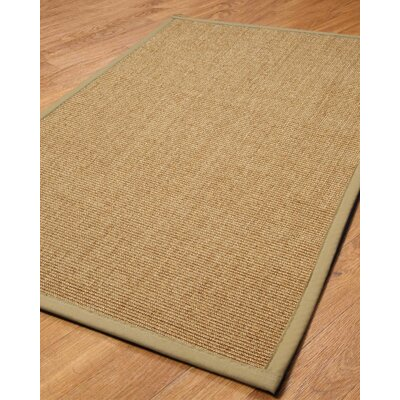 Albers Area Rug Rug Size: Rectangle 6 x 9