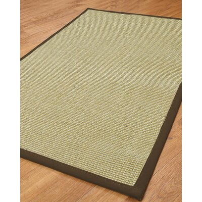 Hibiscus Light Green Solid Area Rug Rug Size: Runner 26 x 8
