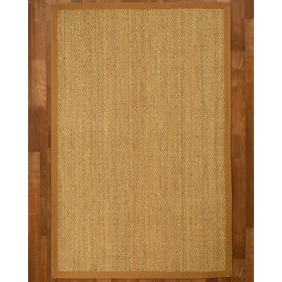 Maritime Handcrafted Honey Area Rug Rug Size: Rectangle 4 x 6