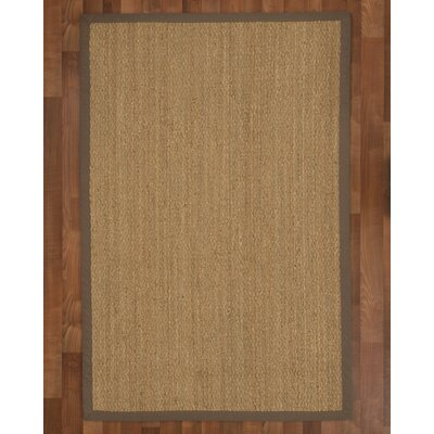 Maritime Handmade Taupe Area Rug Rug Size: Rectangle 4 x 6
