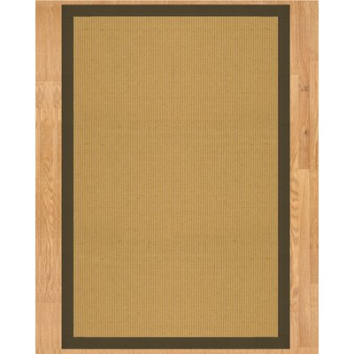 Victoria Hand Crafted Malt Area Rug Rug Size: Rectangle 4 x 6