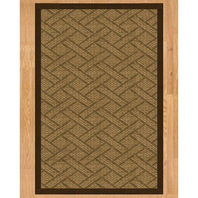 Tempo Hand Crafted Fudge Area Rug Rug Size: Rectangle 6 x 9