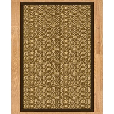 Venus Hand Crafted Fudge Area Rug Rug Size: 3 x 5