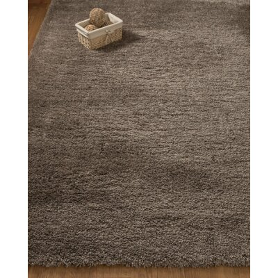 Passion Hand-Woven Beige Area Rug Rug Size: Rectangle 53 x 8