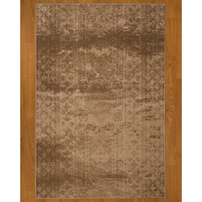 Ibiza Brown Area Rug Rug Size: 53 x 77