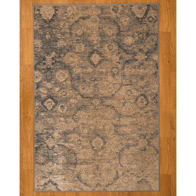 Iris Oriental Blue/Brown Area Rug Rug Size: Rectangle 5 x 8