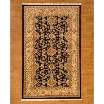 Turkish Bermuda Beige/Black Area Rug Rug Size: Rectangle 6 x 9