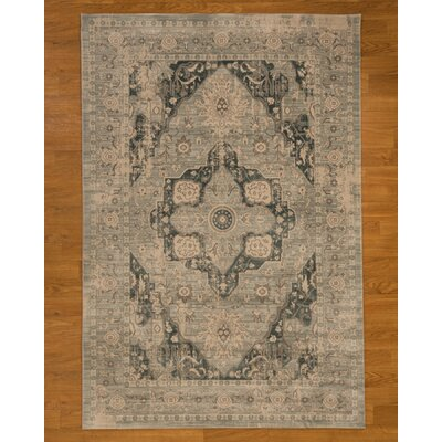 Sarafina Blue Area Rug Rug Size: Rectangle 53 x 75