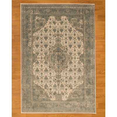 Solara Blue Area Rug Rug Size: Rectangle 53 x 75