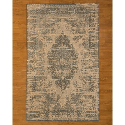 Antelope Gray/Blue Area Rug Rug Size: Rectangle 6 x 9