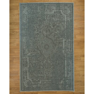Regata Gray Area Rug Rug Size: Rectangle 8 x 10