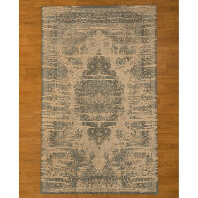Blue/Beige Area Rug Rug Size: Rectangle 6 x 9