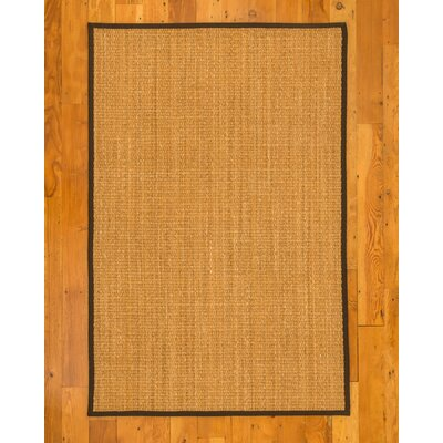 Rainier Hand-Woven Beige Area Rug Rug Size: Rectangle 4 x 6