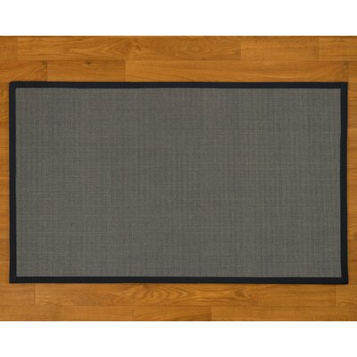 Sisal Handmade Midnight Blue Area Rug Rug Size: Rectangle 2' x 3' 11698