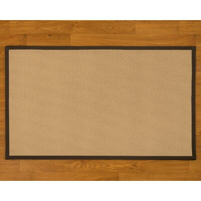 Handmade Beige Area Rug Rug Size: Rectangle 4 x 6