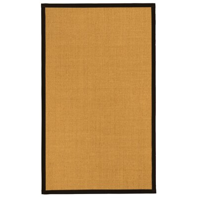 Asia Natural Fiber Sisal Plus Bonus Hand-Woven Beige Area Rug Rug Size: Rectangle 6 x 9