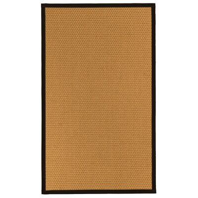 Shauntel Natural Fiber Sisal Plus Bonus Hand-Woven Beige Area Rug Rug Size: Rectangle 3 x 5