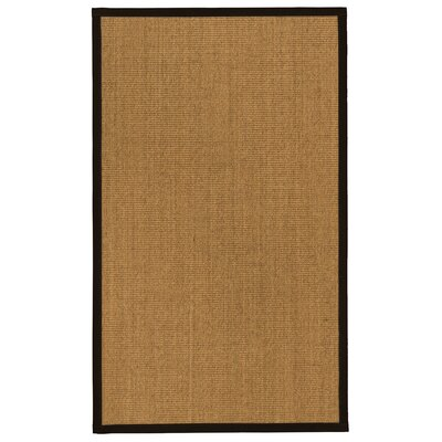 Aspasia� Hand-Woven Beige Area Rug Rug Size: Rectangle 4 x 6