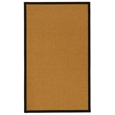 Aula Hand-Woven Beige Area Rug Rug Size: Rectangle 9 x 12