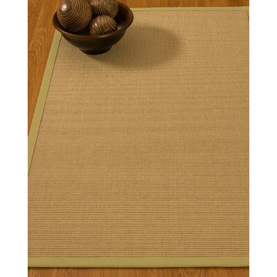 Astley Hand Woven Beige Area Rug Rug Size: Rectangle 12 x 15