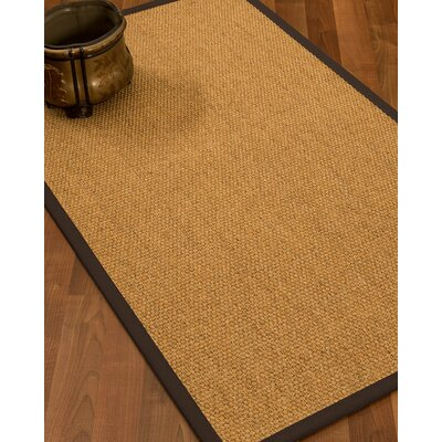 Healey Hand Woven Brown Area Rug Rug Size: Rectangle 4' X 6'