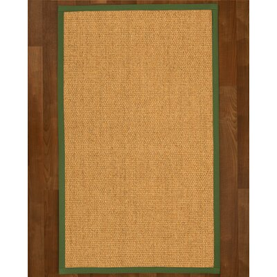 Healey Sisal Green Area Rug Rug Size: 4 X 6