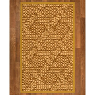 Aalin Hand Woven Brown Area Rug Rug Size: Rectangle 2 X 3