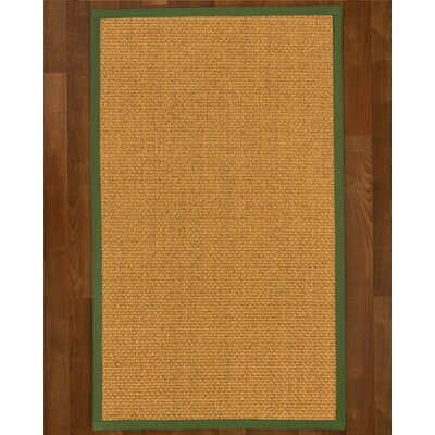 Andlau Hand Woven Brown Area Rug Rug Size: Rectangle 9 x 12