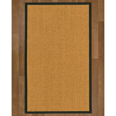 Andlau Hand Woven Brown Area Rug Rug Size: Rectangle 2 X 3