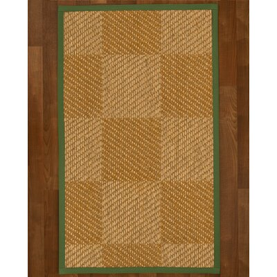 Adley Sisal Green Area Rug Rug Size: 3 X 5