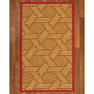 Aalin Sisal Red Area Rug Rug Size: 2 X 3