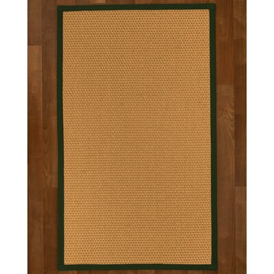 Shauntel Hand-Woven Beige Area Rug Rug Size: Rectangle 4' X 6'