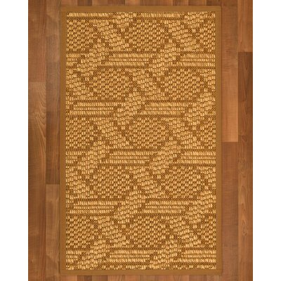 Aalin Hand-Woven Brown Area Rug Rug Size: Rectangle 4 X 6