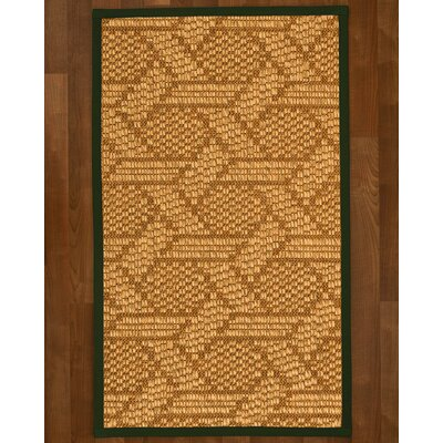 Aalin Hand-Woven Beige Area Rug Rug Size: Rectangle 9 X 12