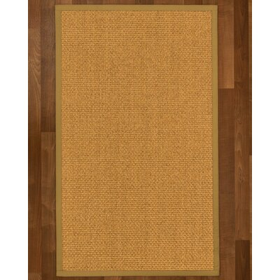 Andlau Hand Woven Brown Area Rug Rug Size: Rectangle 4 X 6
