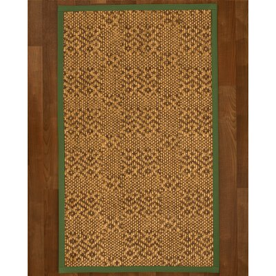 Camile Hand Woven Brown Area Rug Rug Size: Rectangle 9 X 12