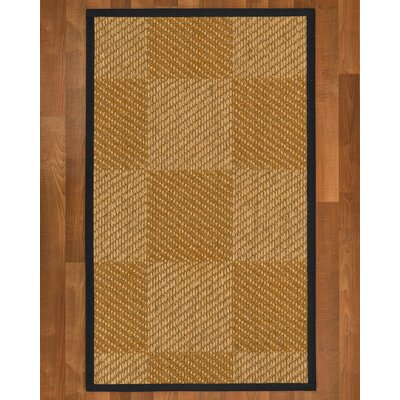 Adley Sisal Midnight Blue Area Rug Rug Size: 4 X 6