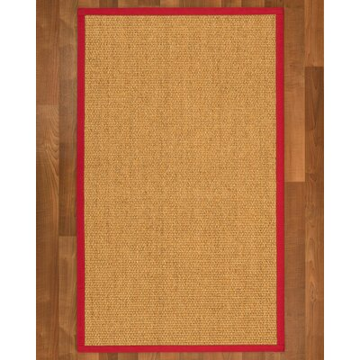 Healey Sisal Red Area Rug Rug Size: 4 X 6