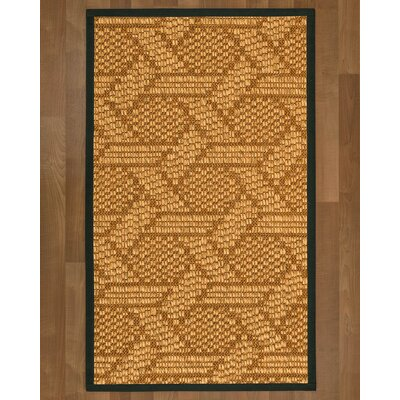 Aalin Hand Woven Brown Area Rug Rug Size: Rectangle 8 X 10