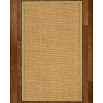 Lanie Hand Woven Beige Area Rug Rug Size: Rectangle 6 X 9