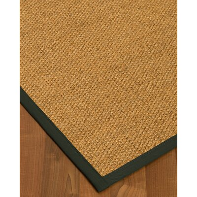 Healey Hand Woven Brown Area Rug Rug Size: Rectangle 2 X 3