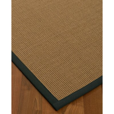 Jamesville Hand Woven Brown Area Rug Rug Size: Rectangle 2 X 3