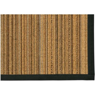 Dover Hand Woven Brown Area Rug Rug Size: Rectangle 2' X 3'