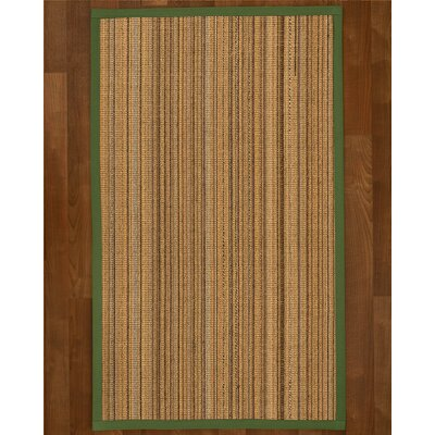 Dover Sisal Green Area Rug Rug Size: 4 X 6