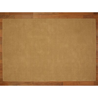 Jewel Hand Woven Tan Area Rug Rug Size: Rectangle 4 x 6