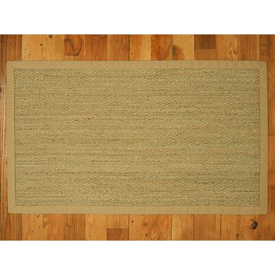 Alland Handmade Sage Area Rug Rug Size: Rectangle 4 x 6